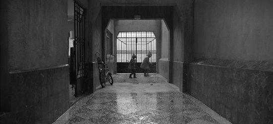 Roma - Revista Mutaciones