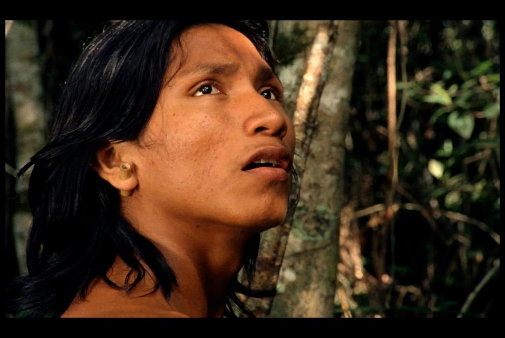 El canto de la selva Revista Mutaciones