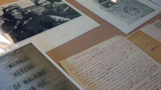 Dear-Werner-Revista Mutaciones3