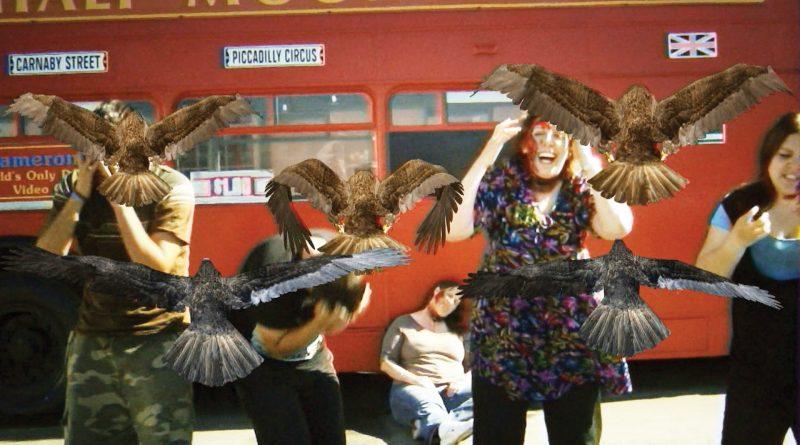 birdemic-shock-mutaciones